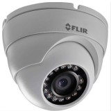 FLIR Visible N233EEP telecamera IP Mini eyeball dome 3 Megapixel IP66
