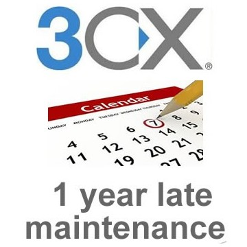 3cx Enterprise 128SC 1 year late maintenance