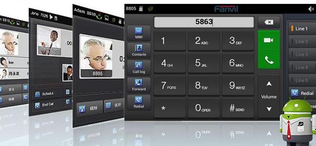 Fanvil C600 funzioni video